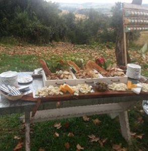 Tapas on Picnic Table