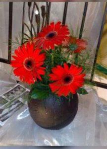 Vase red flowers