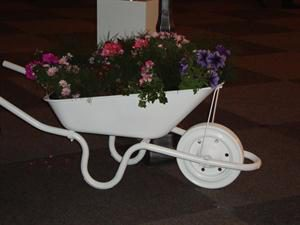 wheelburrow-with-flowers