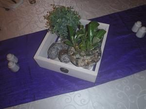 wooden-drawer-with-plants