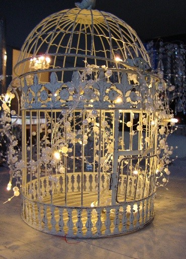 Bird cage with fairy lights